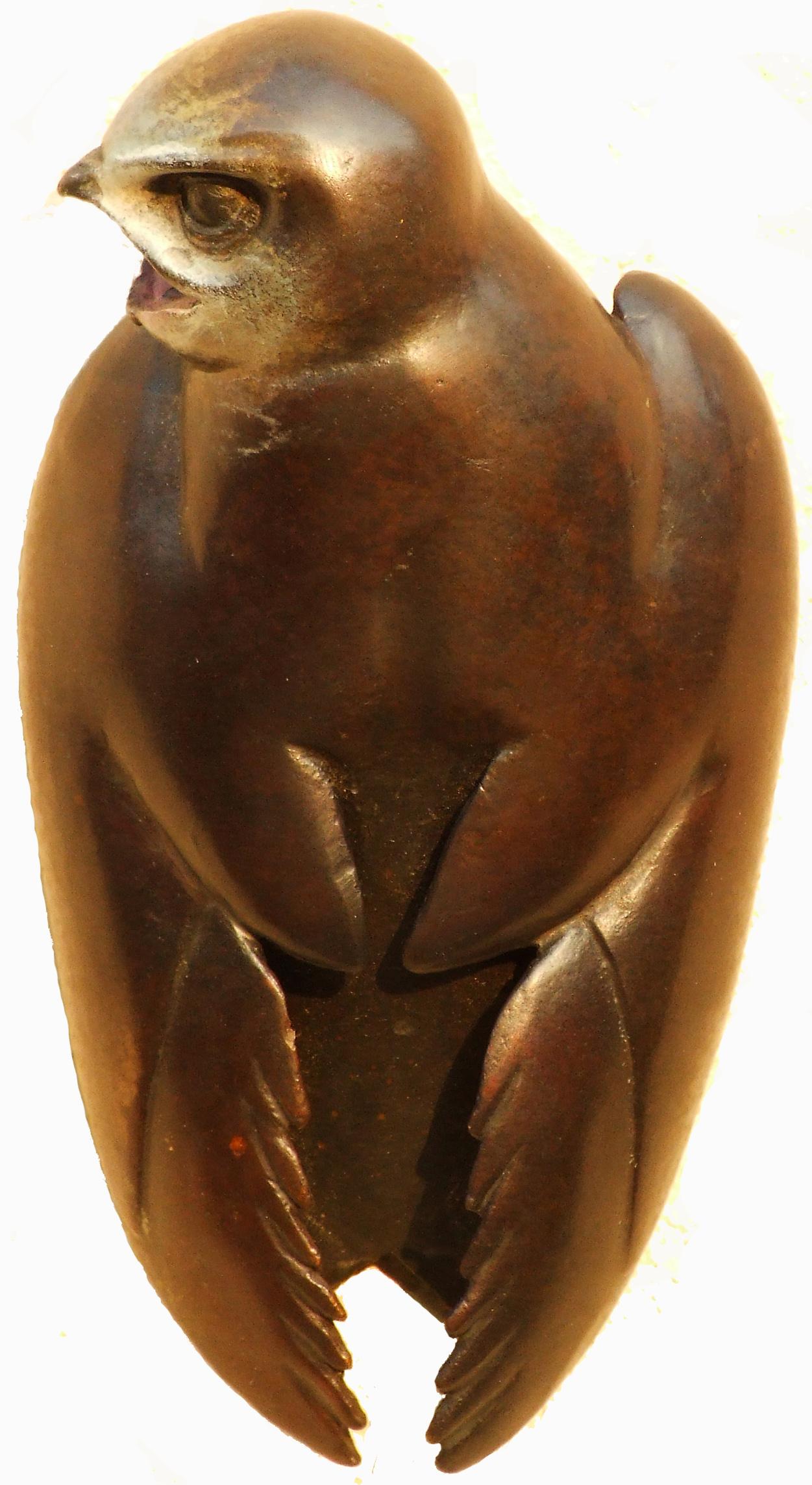 Bronze Swift For website