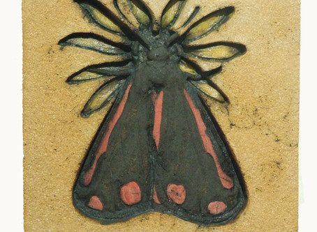 Last of my Mini Beast series the Cinnabar Moth on Ragwort has now been sold!