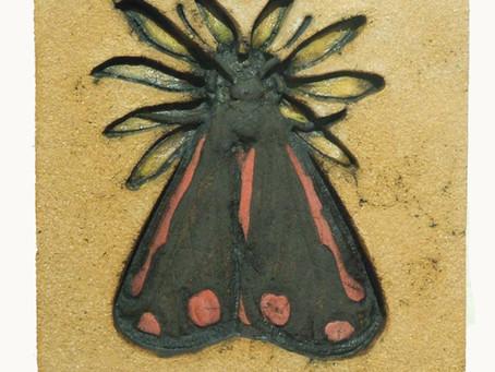 Last of my Mini Beast series the Cinnabar Moth on Ragwort has now been sold!