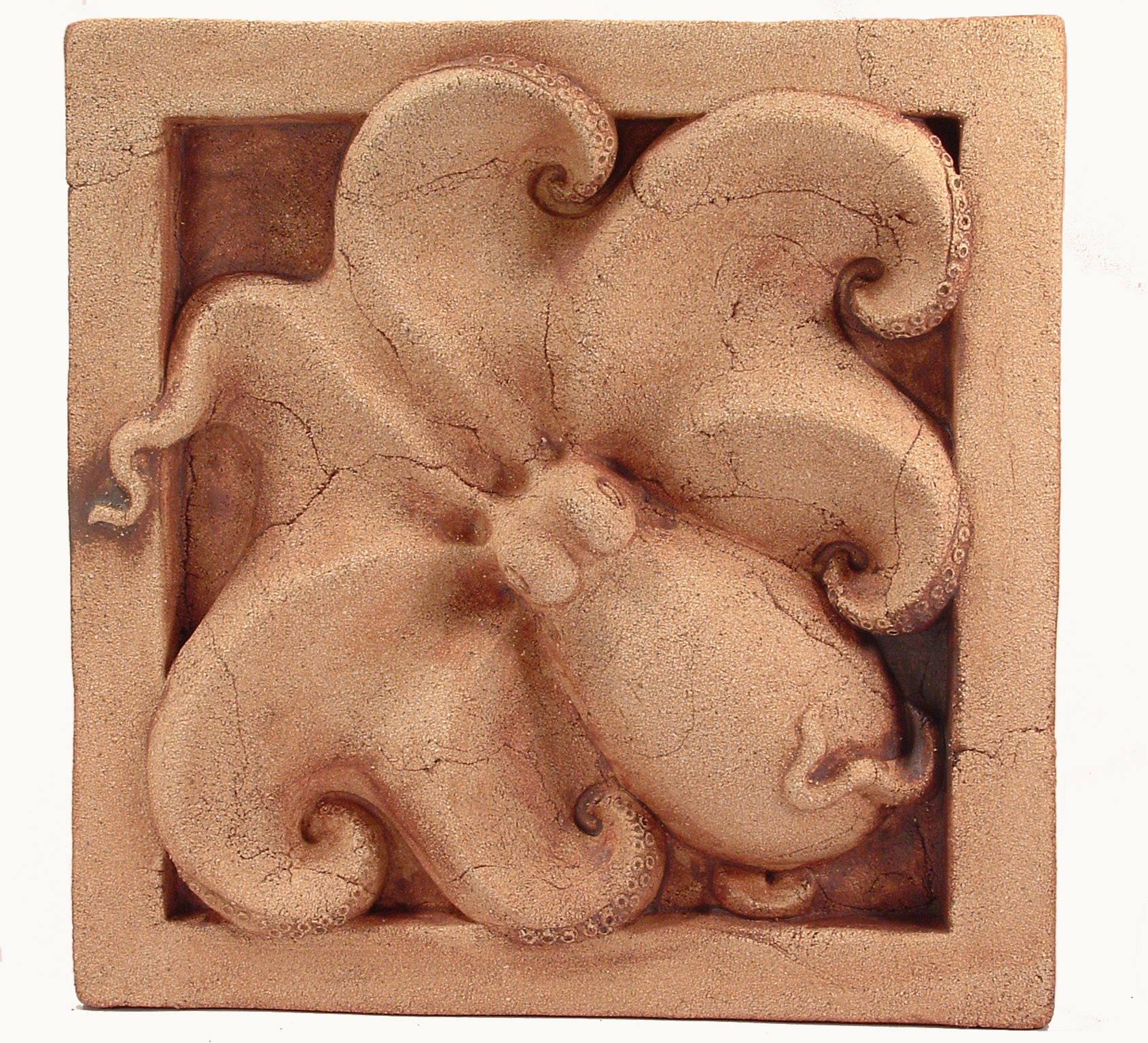 Octopus with red iron oxide wash