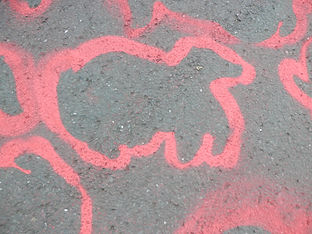 profile of a dead badger done in chalk spray during a community art action in Totnes, South Devon.