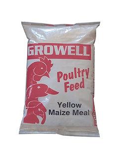 Web_Yellow Maize Meal-01.jpg