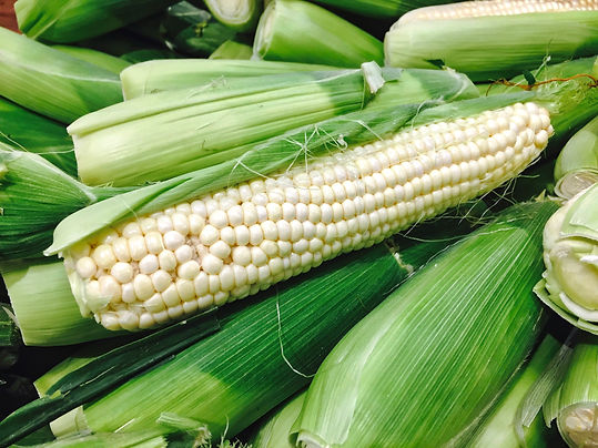 fresh-and-delicious-white-corn-on-the-cob-3DC6BLH.jpg