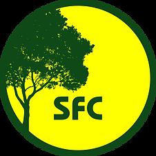 R SFC.png