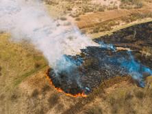 Fire, Devastating Beauty or Destructive Tool?