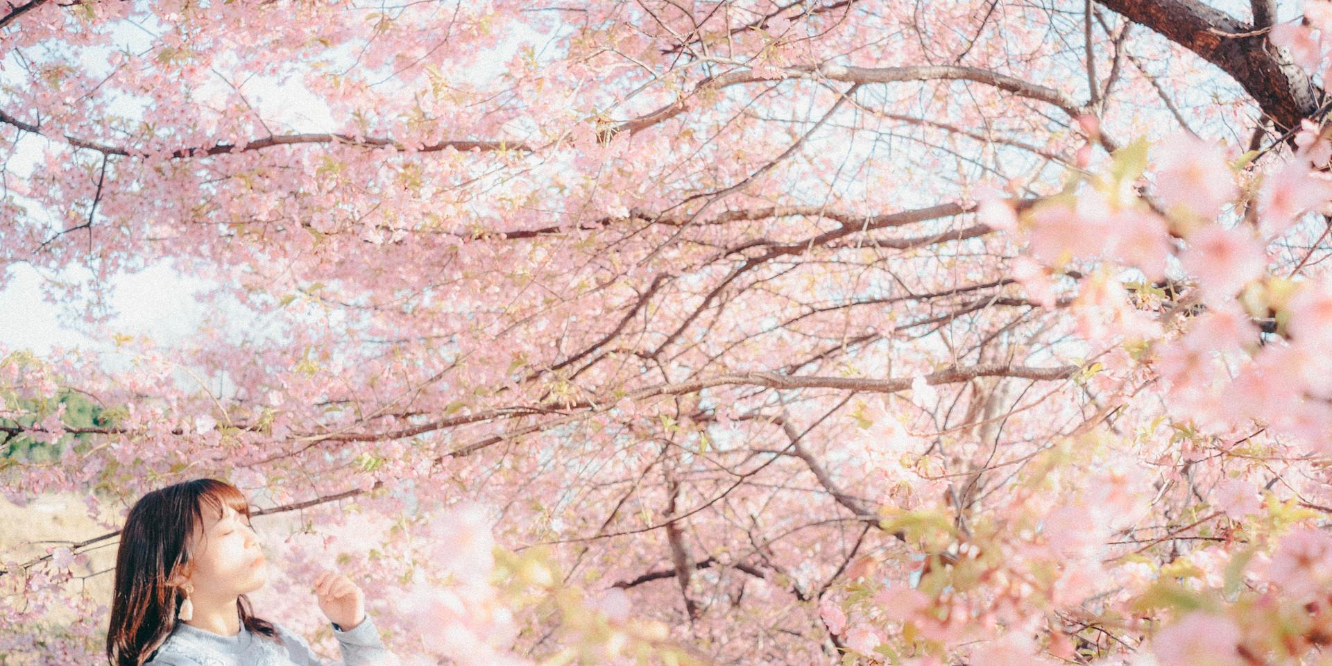 kenjiportrait1.jpg
