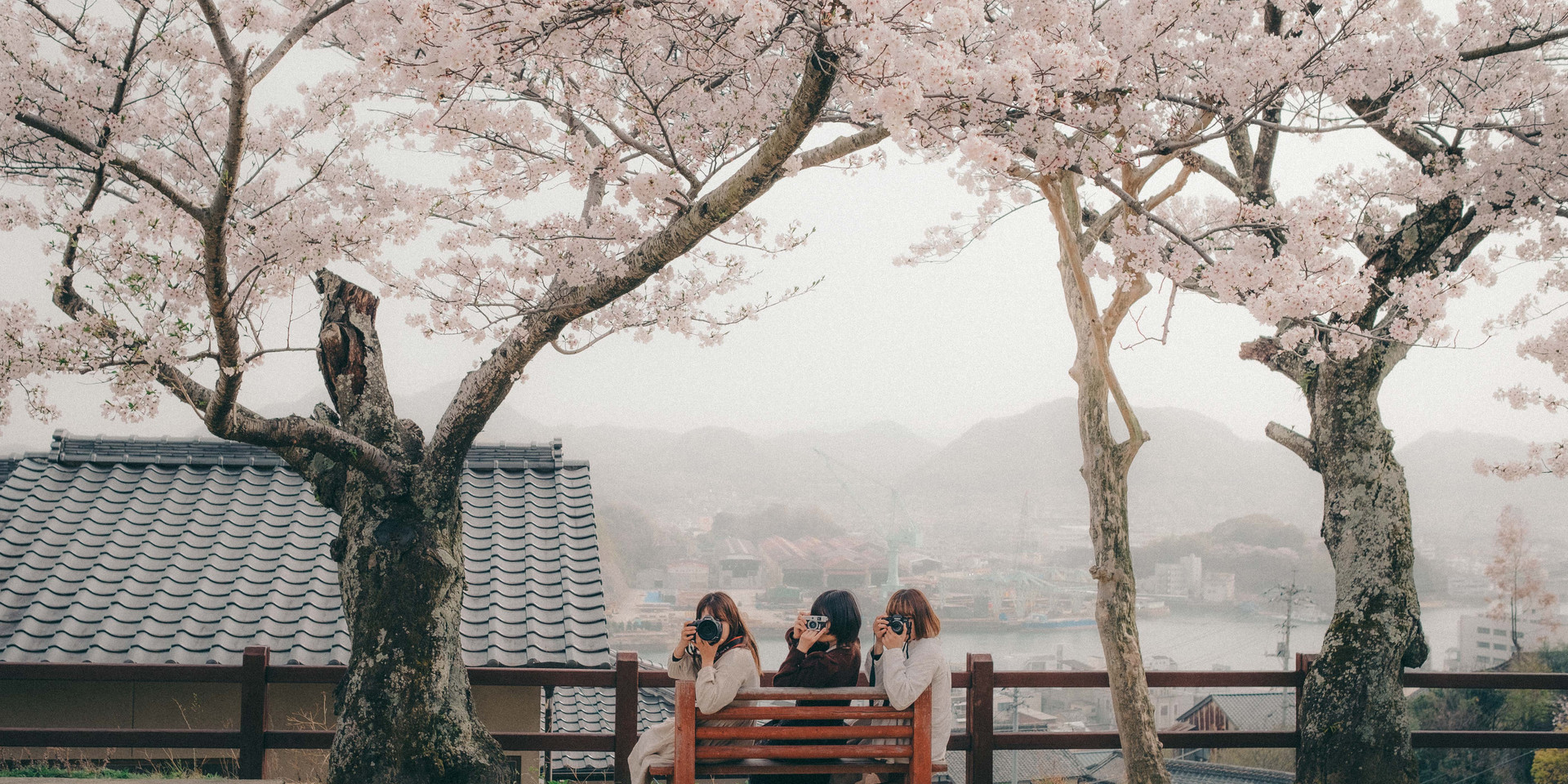 kenjiportrait5.jpg