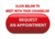 Website Button Counselor Appointment1.pn