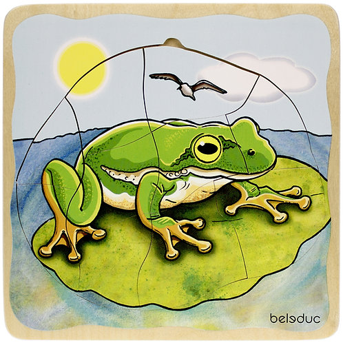 Puzzle grenouille multicouches