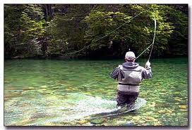 Curso de pesca fines de semana