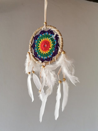 Raffia Rainbow Angel Wing Feather Dreamcatcher- Medium