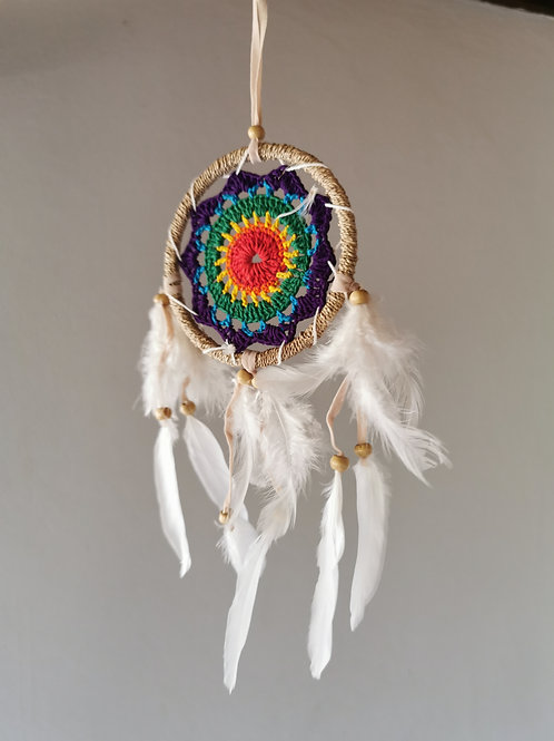 Raffia Rainbow Angel Wing Feather Dreamcatcher- Medium