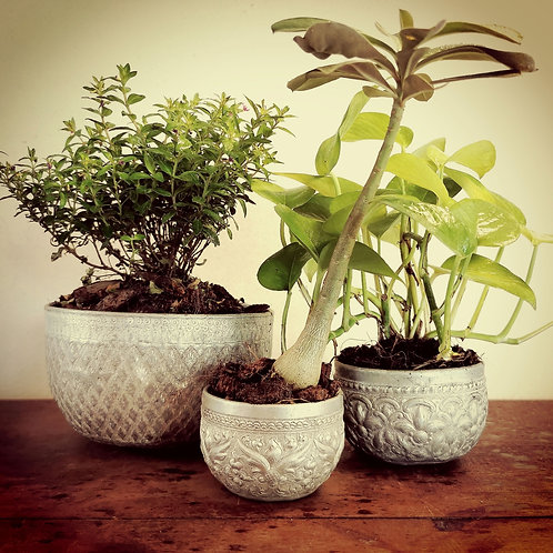 Set of Three Vintage Blessing Bowls