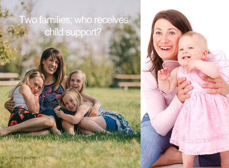Undue Hardship in Paying Child Support For First v Second Family