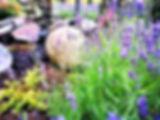 Pflanzbeet mit Lavendel und Steinen