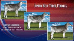 Red Brae Junior Best Three