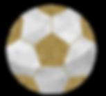 Soccer_Ball1.png