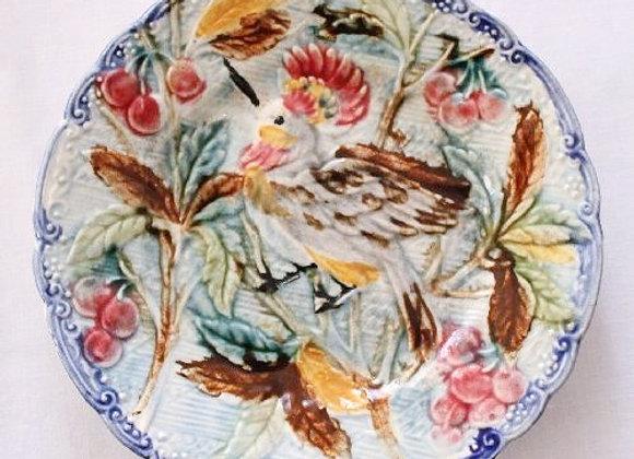 バルボティーヌ(鳥)
