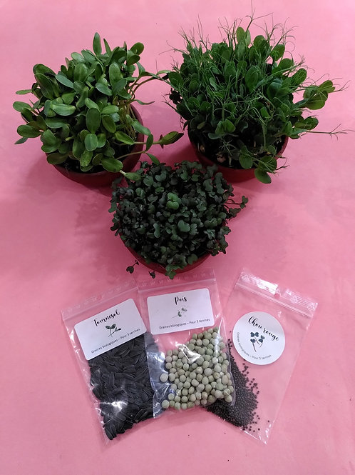 Recharge de graines biologiques : Chou, Tournesol et Pois