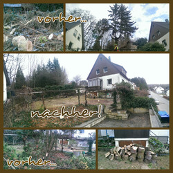 PhotoGrid_1454233435775