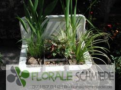 Emailwasserbecken bepflanzt (1)