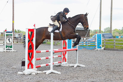 Sue Show Jumping on Glen