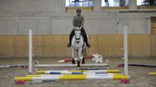 Stangentraining Horse Park 10.01.2021