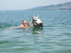 Schwimmen im Sempachersee