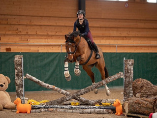 Hallencross Training Horse Park Dielsdorf  26.-28. Februar 2021
