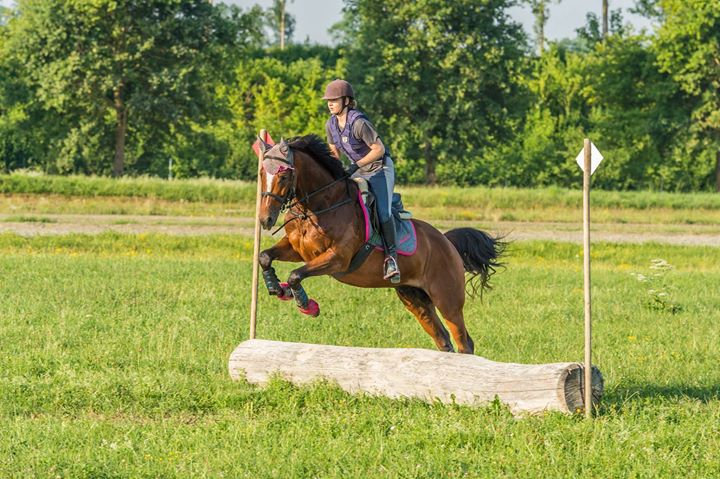 Facebook - Acrobats erstes CC Training in Avenches Foto von Sven Rudinsky