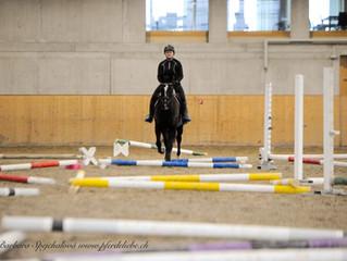 Stangentraining Horse Park Dielsdorf 13./14.02.2021