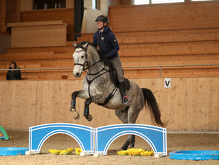 Hallencrosstraining Horse Park Dielsdorf 22./23./24.01.2021