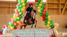 Hallencrosstrainings Horse Park 2021/22