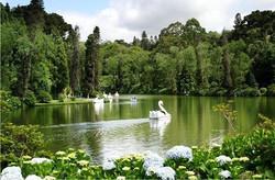 Lago Negro Gramado