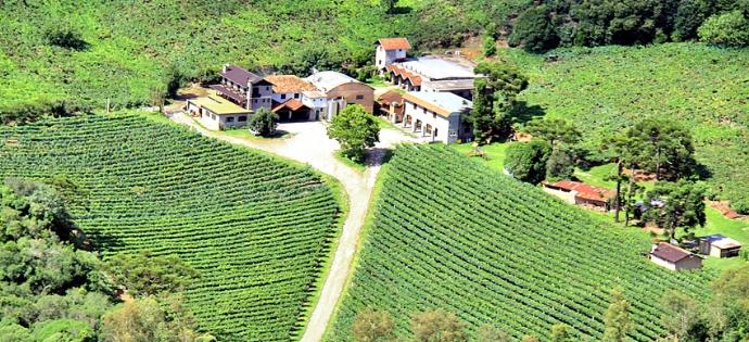 Vinícola Tonet (Caxias do Sul)