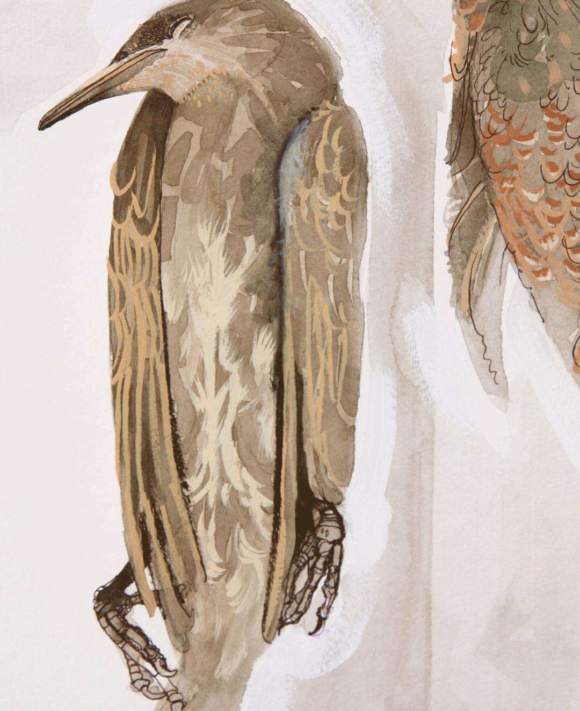 Juvenile Starling (detail)