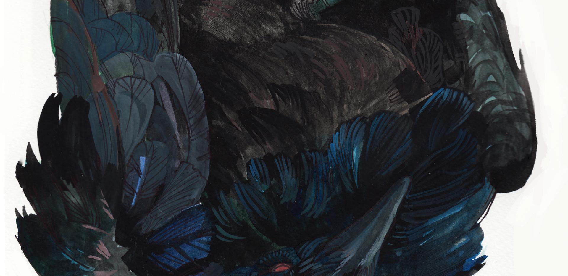 6 Raven Print.jpg