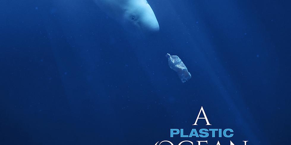 Educational Series: Plastic Oceans