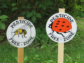 Action Of The Month: Ditch The Pesticides!