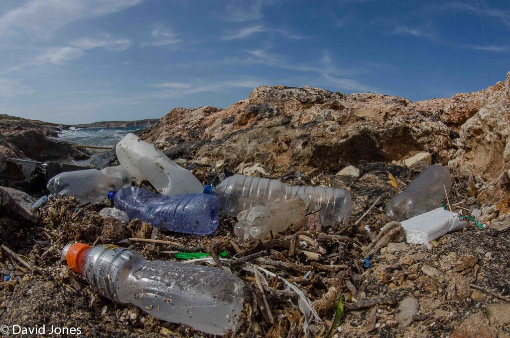 Plastic-on-a-beach-in-Malta-1024x678