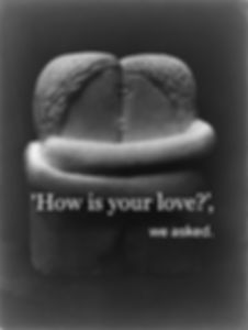 how is your love cover brancusi.jpg
