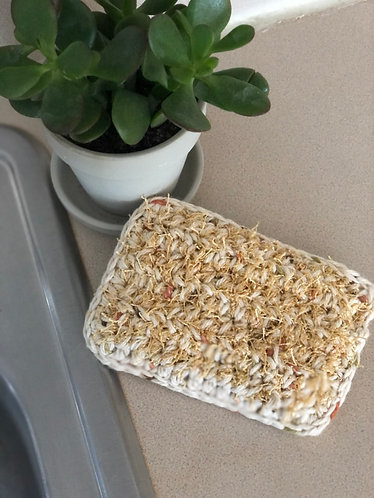 Reusable Sponge for Kitchen and Bath