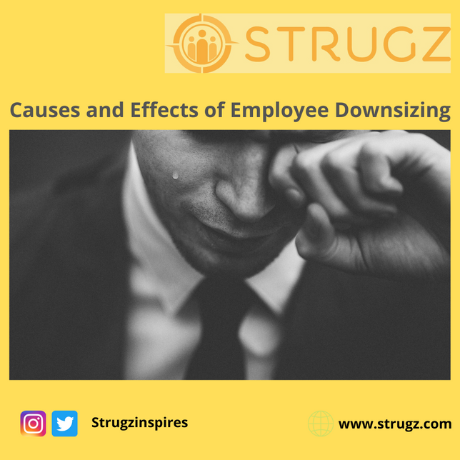 CAUSES AND EFFECTS OF EMPLOYEE DOWNSIZING