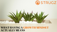 "WHAT HAVING A ""GROWTH MINDSET"" ACTUALLY MEANS"