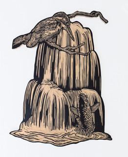 Kingfisher Koi