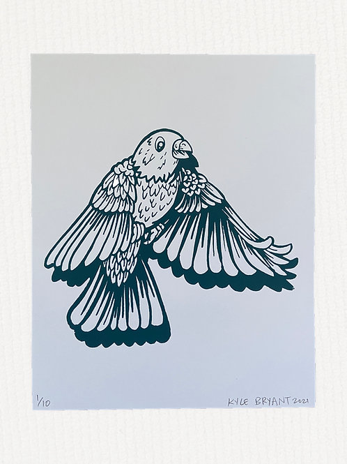 Bird drawing screen print