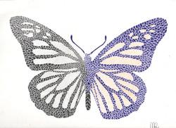 Mario Riveria Butterfly.jpeg