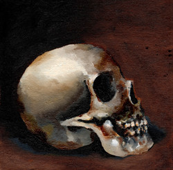 Jack O'Malley Skull Study.jpeg