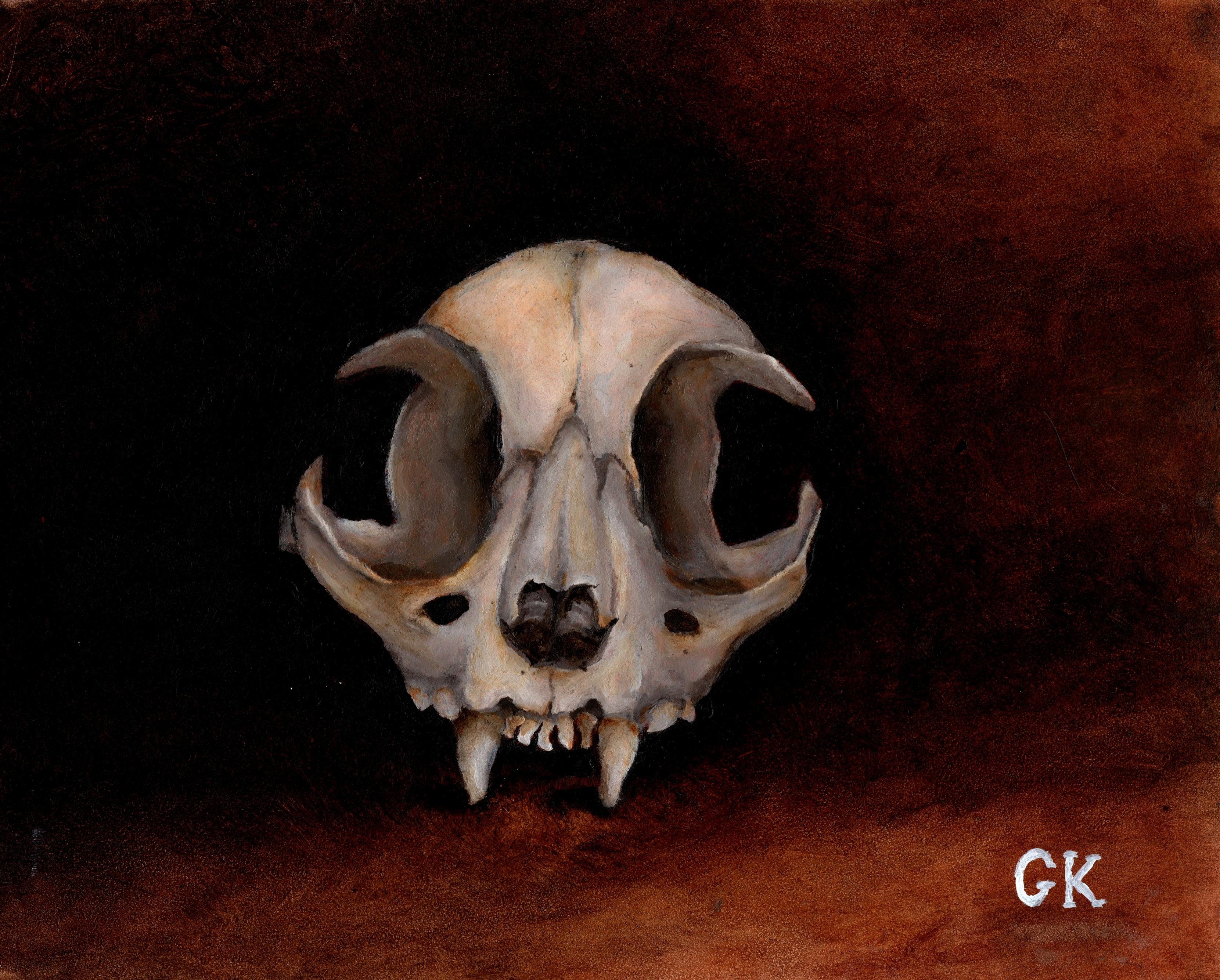 Grant Kearney Cat Skull.jpeg