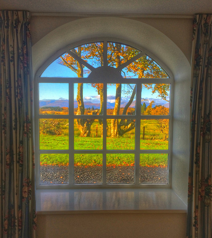 The  Oak window view...